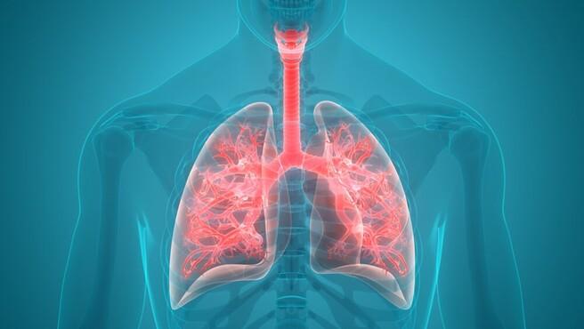 電子タバコが肺に及ぼす影響